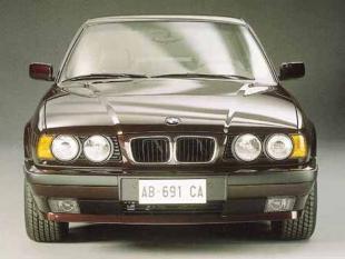 530i V8 cat